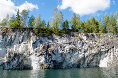 Trees on the marble rocks Stock Photography