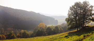 Trees on meadow landscape in early autumn panorama stock photo