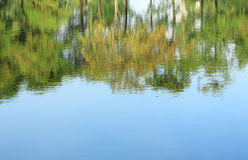 Trees mirrored on rippled water surface Stock Photos