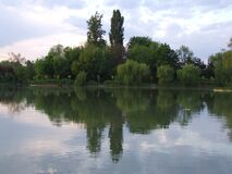 trees-mirroring-in-the-lake Royalty Free Stock Images