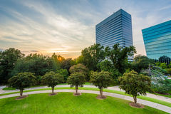 Trees and modern buildings in Columbia, South Carolina. Royalty Free Stock Images