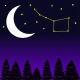 Trees with moon and stars at night. Vector Illustration Stock Photo
