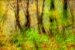 Trees Motion. Impressionist photo, intentional camera movement of autumn trees stock images
