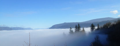 Trees and mountain peaking through mist in Portland, Oregon. Blue sky, winters day with trees and mountain peaking through mist in Portland, Oregon Stock Photography