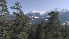 Between Trees Mountain View Aerial 4k. Aerial footage of a beautiful lake in the forest with mountains in the background. Shot in Flims, Switzerland in 4k stock footage
