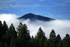 Trees, Mountains, and Clouds Royalty Free Stock Photos