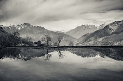 Trees and mountains reflection in still lake Stock Photo