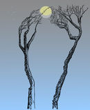 Trees with naked branches. The game with the moon. Two trees with bare branches. Games with the Moon Royalty Free Stock Photo