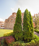 Trees near the ancient temple of the Old Nessebar Royalty Free Stock Photos
