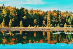 Trees Near Clear Calm Body of Water Under Blue and White Sky Royalty Free Stock Image