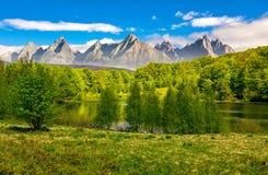 Trees near the lake in High Tatras Royalty Free Stock Photo