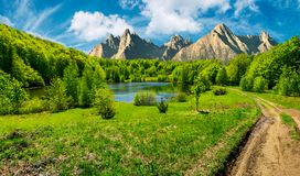 Trees near the lake in High Tatras. Composite summer landscape. trees on the shore of a clear lake at the foot of epic high Tatra mountain ridge. rocky peaks stock image