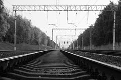 Trees near railroad. black and white Stock Photos
