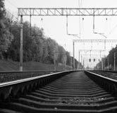 Trees near railway. black and white Royalty Free Stock Photo