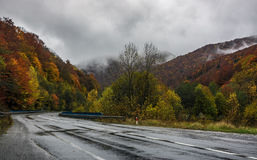 Trees near the road in mountains. Landscape in early autumn Royalty Free Stock Images