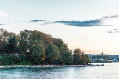 Trees. near Vanier Park and Kitsilano Beach in Vancouver, Canada Royalty Free Stock Photography