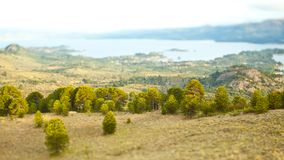Trees Next To A Lake On A Tilt Shift Landscape Next To A Lake In The Mountains Stock Image