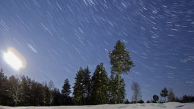 Trees in the night sky. Line. Time Lapse stock video footage