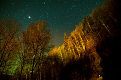 Trees at Night With Stars Royalty Free Stock Photo