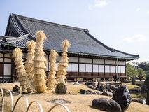 Trees of the Nijo Castle Royalty Free Stock Image