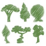 Trees, oak, pine, bush, willow, acacia Royalty Free Stock Photography