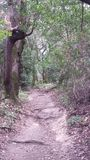 Quiet trail Royalty Free Stock Images