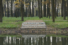 Trees, oaks, stone staircase reflected in the water source of th Royalty Free Stock Photo