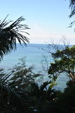 Trees and ocean view. Calm Caribbean sea, with blue sky and horizon in Jamaica on our holiday, trees in the front with green leafs royalty free stock image