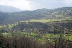 Trees och berg Arkivbild