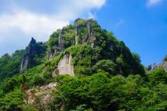 Trees och berg Fotografering för Bildbyråer