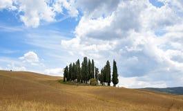 Trees och moln Royaltyfri Bild