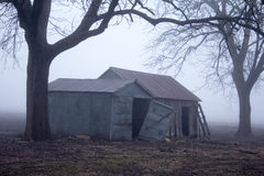 Trees and old farm building in early morning fog Royalty Free Stock Photography