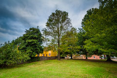 Trees in the Old Salem Historic District, in Winston-Salem, Nort Royalty Free Stock Images