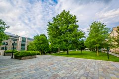 Trees and open space at Loyola University Maryland, in Baltimore, Maryland.  stock image