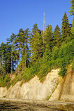Trees over blue sky on top of cliff by seawall Stock Photo