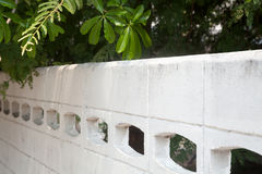 Trees overhanging a white concrete fence on a sunny day Royalty Free Stock Photo