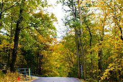 Ozark Mountain Drive in the Fall. Trees in the Ozark Mountains change to brilliant yellows, oranges, reds and green in the fall Royalty Free Stock Images