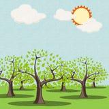 Trees på gräs sätter in i sommar Arkivbild