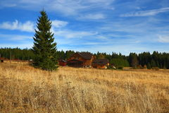Trees, Panorama, Autumn, Filipova huť, Sumava, Boemerwald, Czech Republic Stock Photos