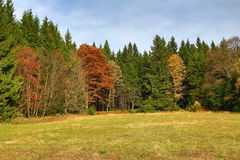 Trees, Panorama, Autumn, Zelezna Ruda, Sumava, Boemerwald, Czech Republic Stock Photo