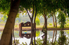 Trees with park bench reflected in pond Royalty Free Stock Photos