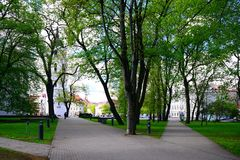 Trees in park near Cathedral place in Vilnius town Stock Photography