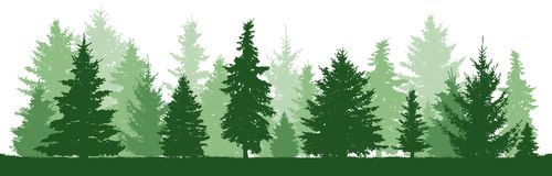 Trees pine, fir, spruce, christmas tree. Coniferous forest, vector silhouette. Trees pine and fir and spruce, christmas tree. Coniferous forest, vector royalty free illustration