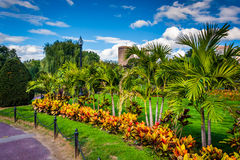 Trees and plants along a path at the Public Garden in Boston, Ma Stock Photos