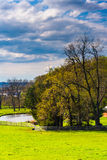 Trees and pond on a farm in rural York County, Pennsylvania. Stock Images
