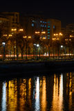 Trees and public lamps over Dambovita River at night. Horizonal Stock Images
