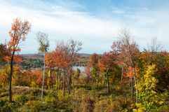 Trees with red and orange leaves during Indian Summer in Quebec, Canada. Trees with red and orange leaves with blue sky background during Indian Summer in Quebec Royalty Free Stock Photos