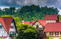Trees and red-roofed buildings in Helen, Georgia. Stock Images