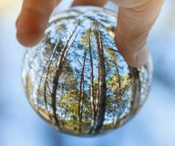 Trees reflected in glass sphere held by human hand stock images