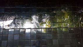 Trees reflected image on tile finished pool bottom Stock Photos